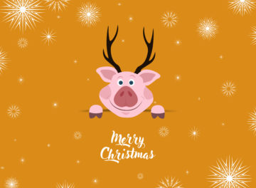 Christmas Card With Cute Pig