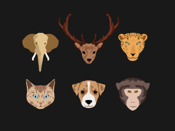 Stylized Animal Illustration