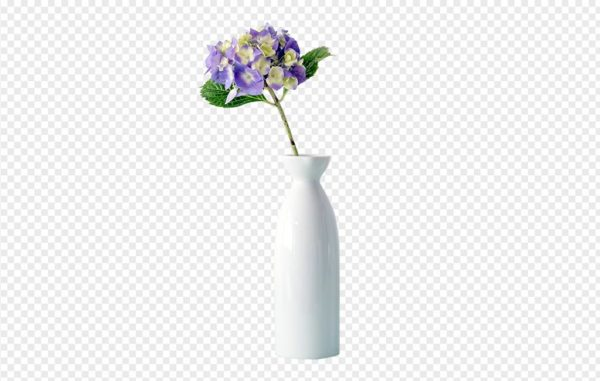 Hydrangea In The Vase PNG