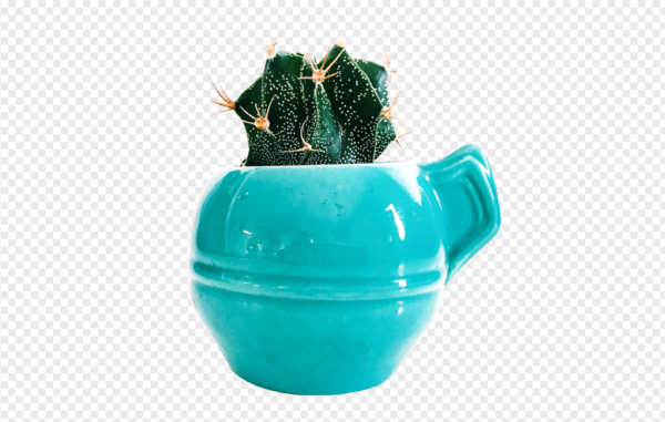 Cactus in bluepot PNG